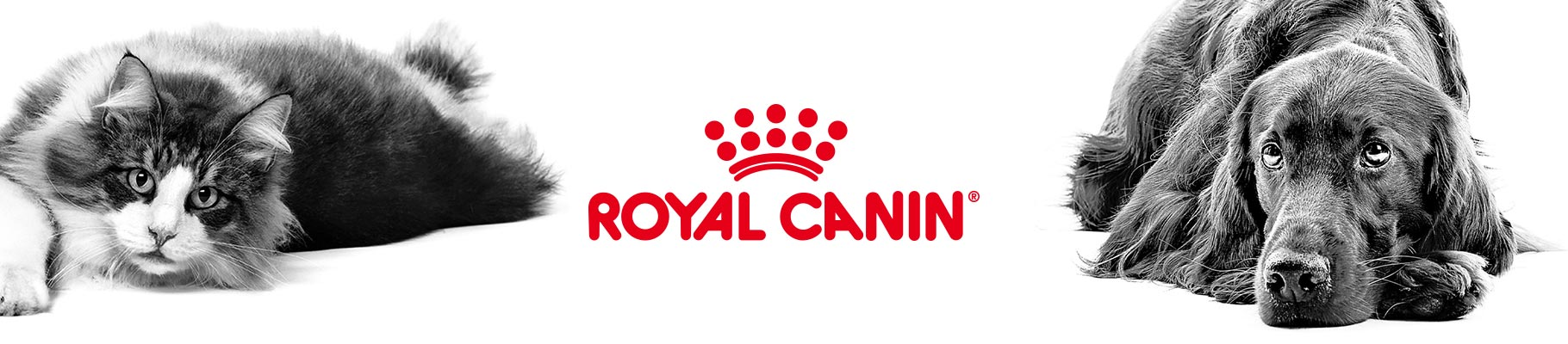 Royal Canin logo with a dog and cat in black and white wide banner