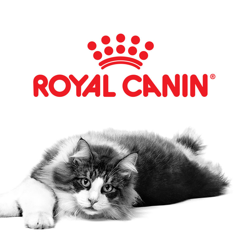 logo and cat image of Royal Canin brand square